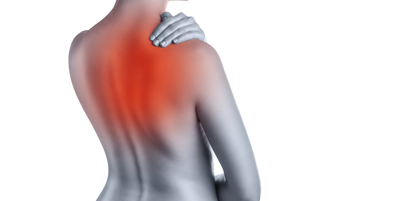 Back Pain: Upper, Mid Back, Low and Lower Back